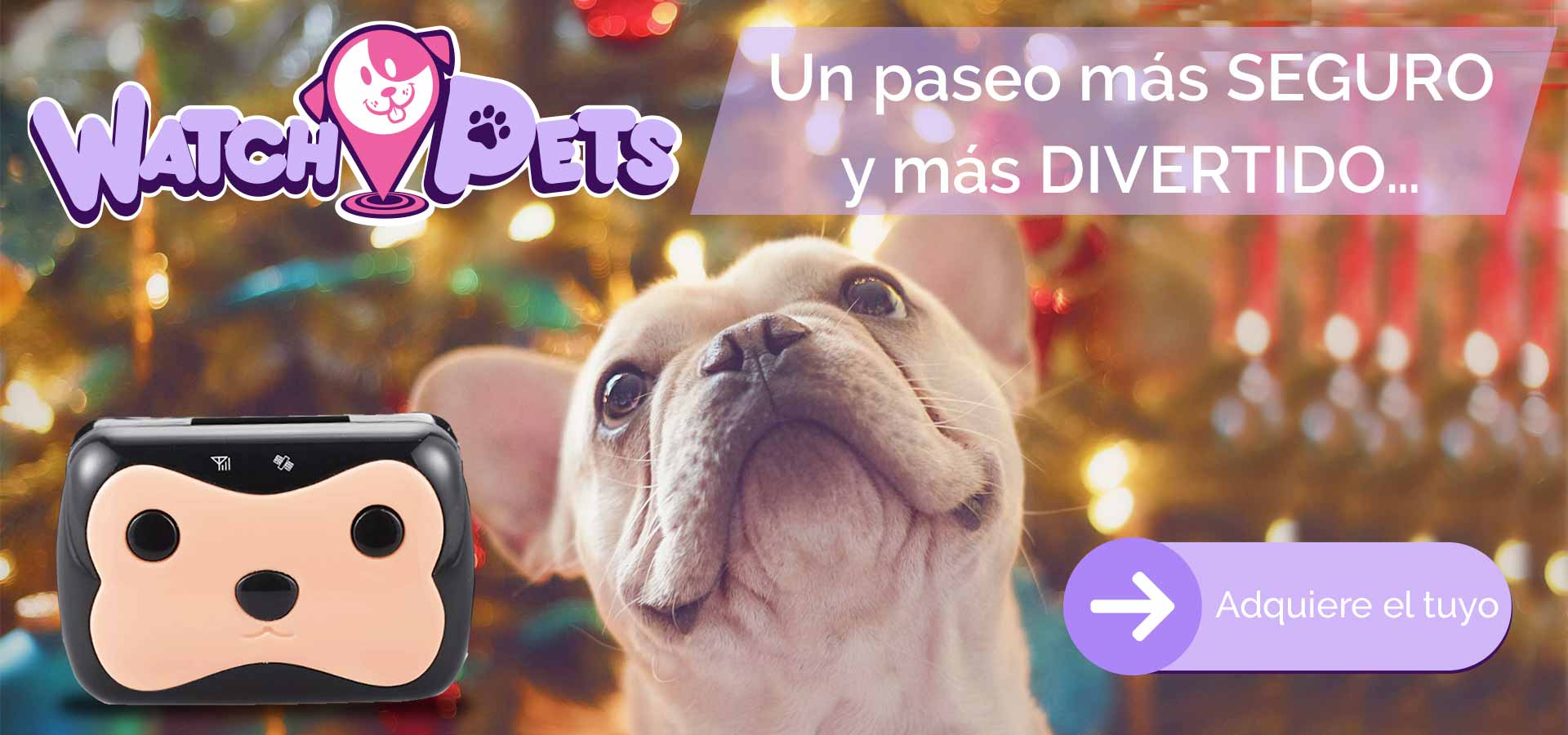 wathckids-pets-unpaseomasdivertido-V2